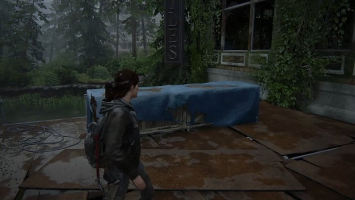Betreten Sie nun das Gebäude, gehen Sie nach oben, klettern Sie auf das Gerüst und gehen Sie in Richtung Fluss - The Last of Us 2: Straße zum Aquarium, Seattle Tag 3 Ellie-Komplettlösung - Seattle Tag 3 - Ellie - The Last of Us 2 Guide