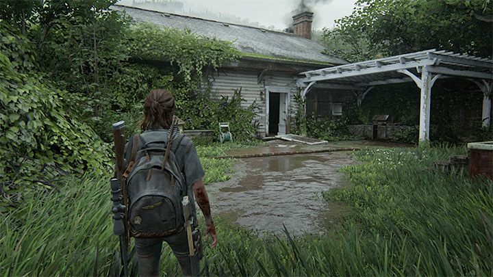 Es ist eine Sammelkarte für Sammler - ein Sammlerstück - The Last of Us 2: Hillcrest - Sammlerstücke, Artefakte, Münzen - Seattle Day 2 - Ellie - The Last of Us 2 Guide