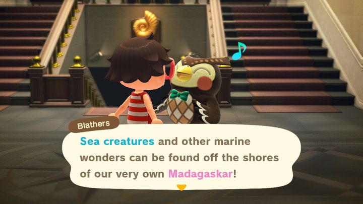 Meerestiere können dem Museum gespendet werden. - Animal Crossing: Sommer-Update (1.3.0) - Was ist neu? - Grundlagen - Animal Crossing New Horizons Guide