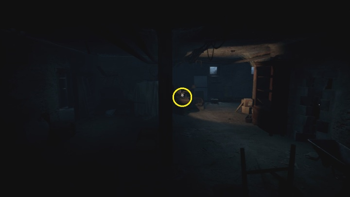 Location: in the basement, in Thomas' house - The Medium: Echoes - list - Secrets and Collectibles - The Medium Guide