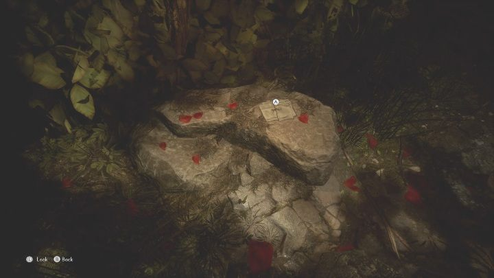 The last item is on a rock that should be easy to spot – there are petals of a red flower scattered around - The Medium: Richards House - walkthrough - The Medium Guide